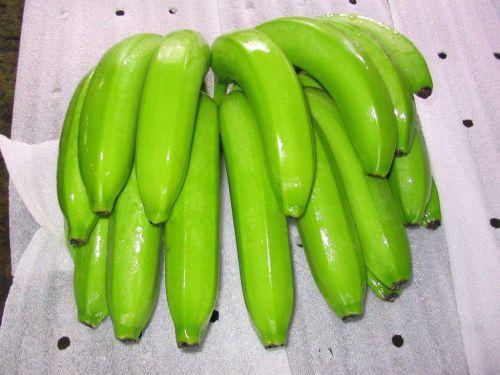 chuối xanh giúp giảm cân  - giam can bang chuoi 1 - Ăn chuối luộc thay cơm: Bí quyết ĐÁNH BAY 11kg mỡ thừa trong 2 tuần, hiệu quả mà dễ tội gì không thử