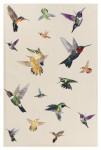 HỌA TIẾT CHIM THÊU: Họa tiết chim thêu - xu hướng hot nhưng không phải là mới