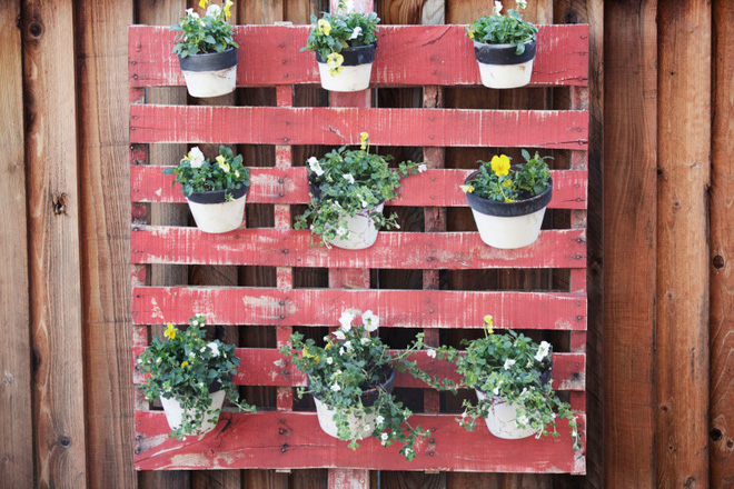 18 cách cực hay mà đơn giản để làm mới sân vườn nhà bạn - Ảnh 9.