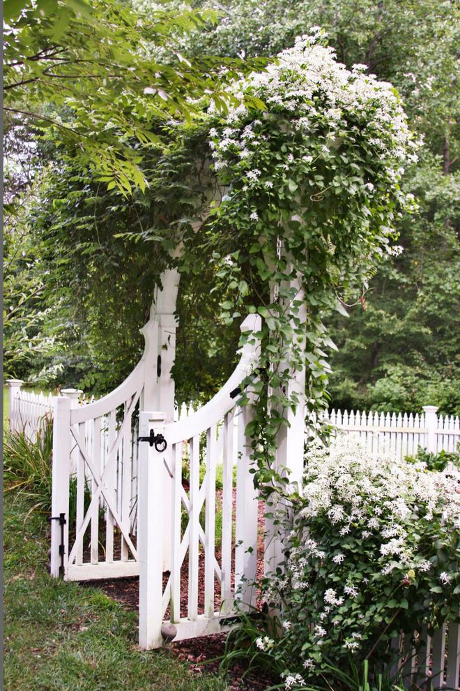 18 cách cực hay mà đơn giản để làm mới sân vườn nhà bạn - Ảnh 2.