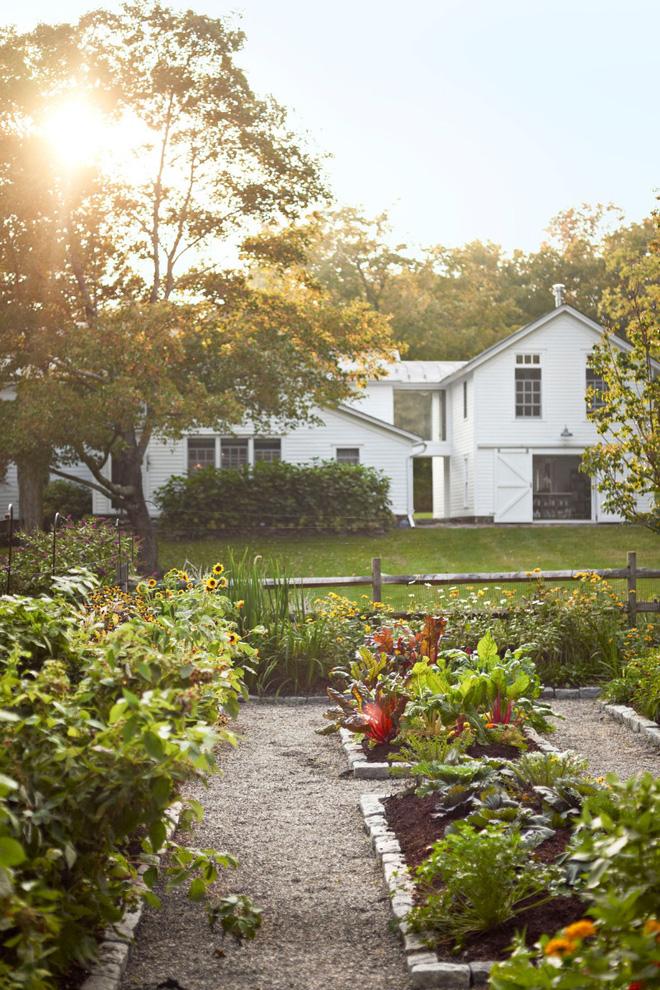 18 cách cực hay mà đơn giản để làm mới sân vườn nhà bạn - Ảnh 5.
