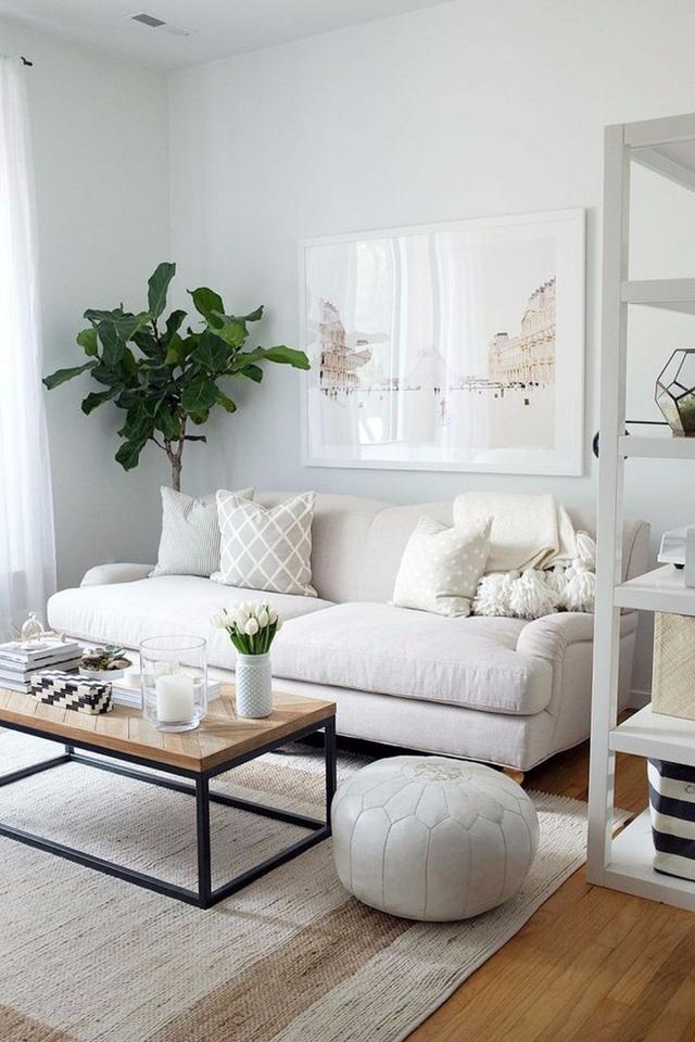 Hãy làm cho không gian của bạn đặc biệt hơn với bức ảnh của chính mình được in ra và treo lên tường.