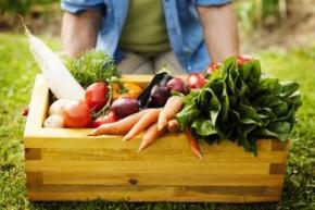6 loại thực phẩm cho người bị viêm dạ dày có thể ăn được