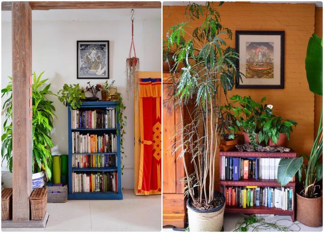 Cô gái độc thân biến căn hộ nhỏ ở chung cư cao tầng của mình thành vườn cây trong phố - Ảnh 9.