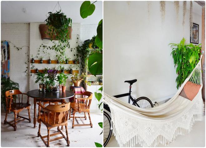Cô gái độc thân biến căn hộ nhỏ ở chung cư cao tầng của mình thành vườn cây trong phố - Ảnh 13.