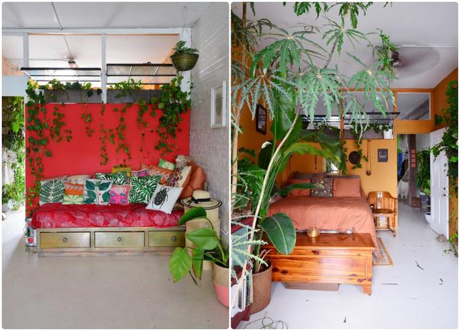 Cô gái độc thân biến căn hộ nhỏ ở chung cư cao tầng của mình thành vườn cây trong phố - Ảnh 14.