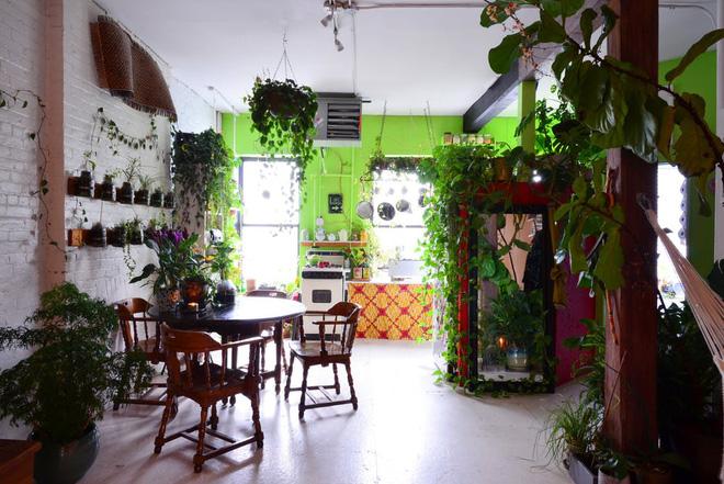 Cô gái độc thân biến căn hộ nhỏ ở chung cư cao tầng của mình thành vườn cây trong phố - Ảnh 2.