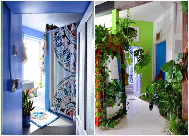 Cô gái độc thân biến căn hộ nhỏ ở chung cư cao tầng của mình thành vườn cây trong phố - Ảnh 3.