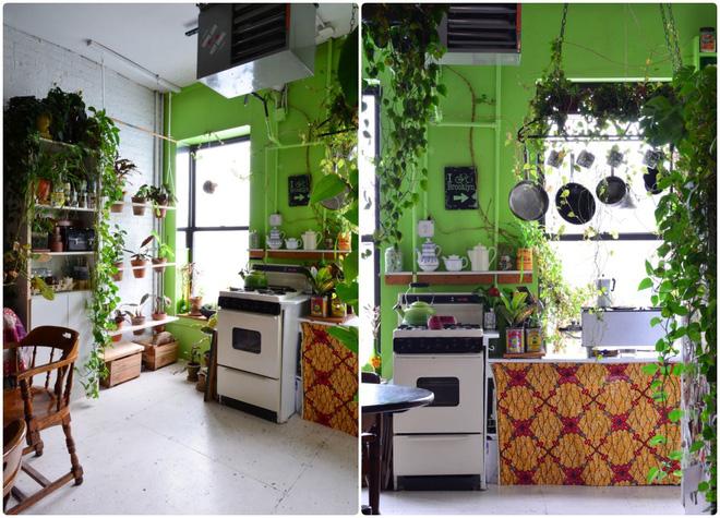 Cô gái độc thân biến căn hộ nhỏ ở chung cư cao tầng của mình thành vườn cây trong phố - Ảnh 4.
