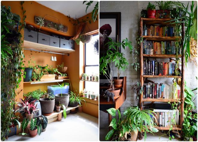 Cô gái độc thân biến căn hộ nhỏ ở chung cư cao tầng của mình thành vườn cây trong phố - Ảnh 8.