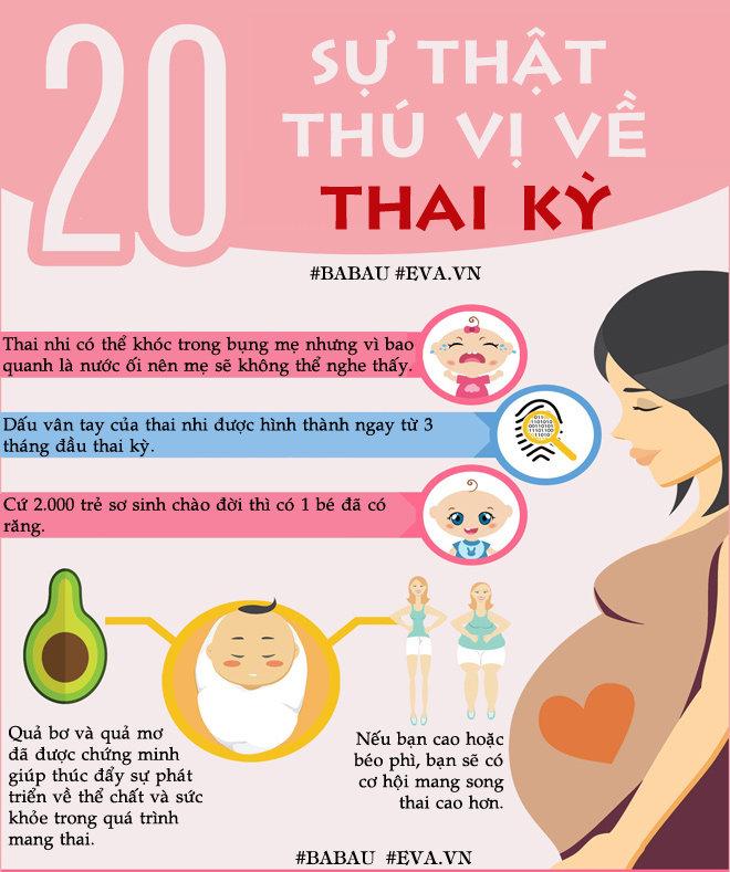 20 sự thật thú vị về thai kỳ, đang mang thai nhưng chưa chắc bạn đã biết