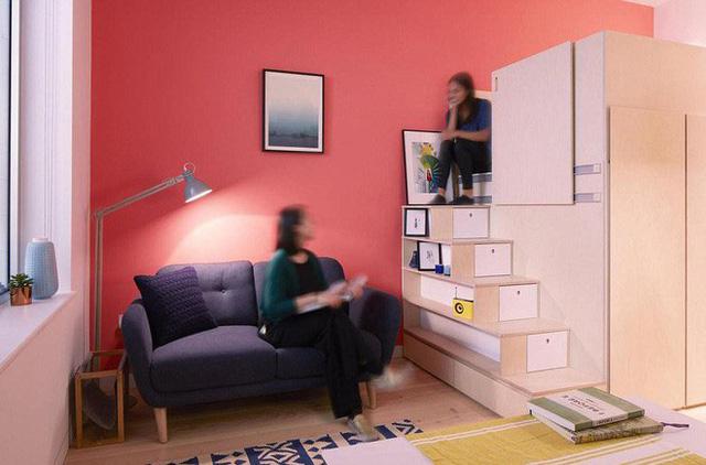 Hệ cây thang vừa là lối lên phòng ngủ, vừa có tác dụng lưu trữ đồ đạc và kiêm thêm chỗ ngồi chơi khá thú vị.