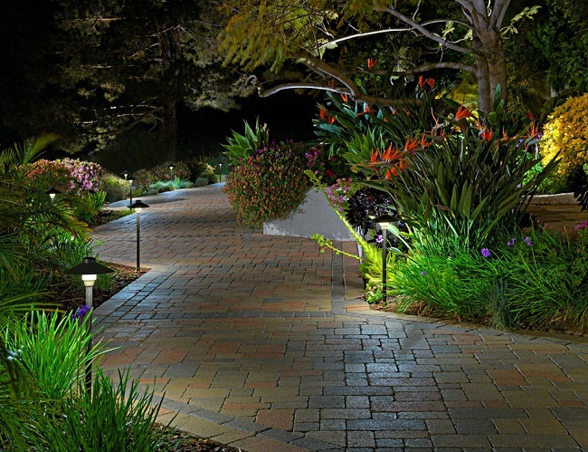 Gợi ý trang trí sân vườn bằng bóng đèn OPPLE