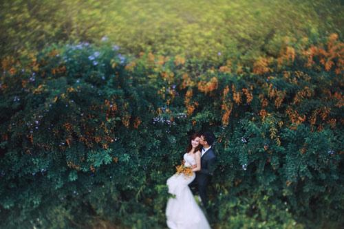 Đẹp mê mẩn ảnh cưới giữa cánh đồng hoa Mộc Châu - 2