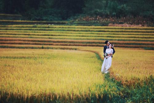 Đẹp mê mẩn ảnh cưới giữa cánh đồng hoa Mộc Châu - 9