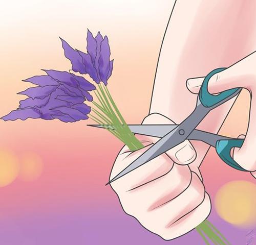 Tự làm tinh dầu hoa để da bóng, tóc mượt - 1