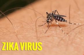 Virus Zika liên tiếp được phát hiện thêm ở trẻ mắc dị tật đầu nhỏ tại Việt Nam