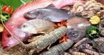 Mẹo giữ các món hải sản tươi ngon 3 ngày không cần tủ lạnh cực đơn giản