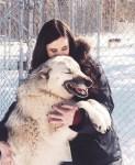 Cô gái được chó sói cứu thoát khỏi bệnh trầm cảm sau khi bị cưỡng hiếp - Giới trẻ