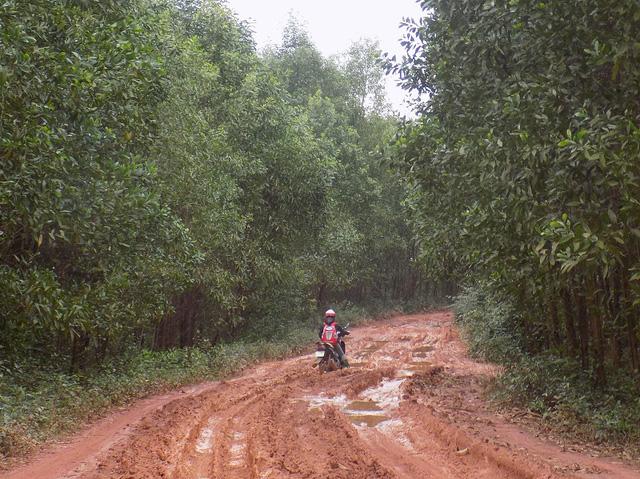 Đường quá lầy lội, học sinh phải chuyển sang... tỉnh khác học