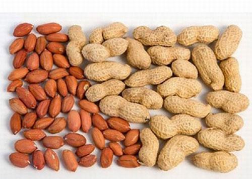 Ăn đậu phộng có tốt không: Những người tuyệt đối không nên ăn củ lạc
