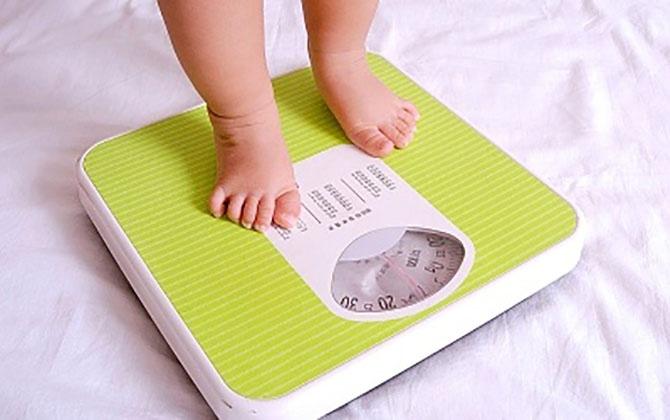 Ngày Tết bận rộn, phụ huynh làm gì để con không sụt cân?