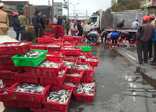 Người dân gom hai tấn cá giúp tài xế bị lật xe