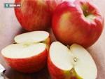 Những loại quả giúp phòng bệnh thận: Hãy ăn càng nhiều càng tốt từ bây giờ