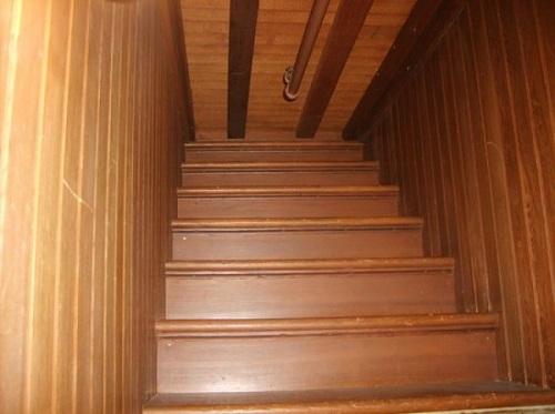 Thiết kế cánh cửa dẫn thẳng lên trần nhà không một căn nhà nào có.