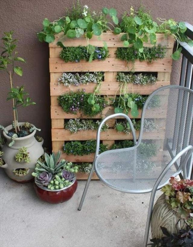 10 góc vườn ban công nhỏ xinh mà bất cứ chị em nào cũng muốn rinh ngay về ban công nhà mình