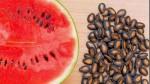 Tác dụng của hạt dưa hấu khi đun sôi lấy nước uống, bạn sẽ bất ngờ vì kết quả