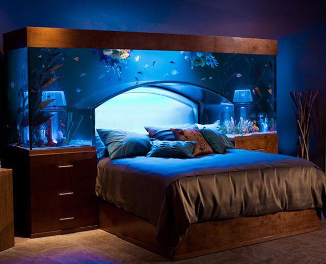 Phòng ngủ độc đáo với giường đặt dưới bể cá hình vòm. Đây chắc hẳn là phòng ngủ mơ ước của bất cứ ai yêu thích đại dương.