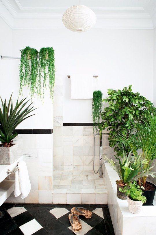 Cách này sẽ giúp nhà tắm của bạn luôn xanh đẹp, thoáng mát như đi spa