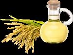 Dầu cám gạo – bí quyết dưỡng da cho phụ nữ