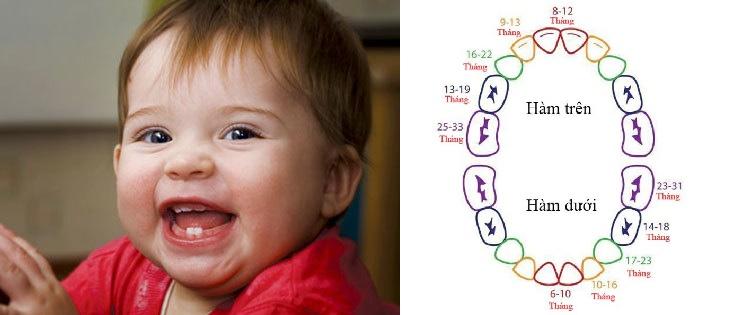 Tất tần tật về chuyện mọc răng của bé: thời gian, dấu hiệu và cách chăm sóc, giảm đau mẹ nên biết