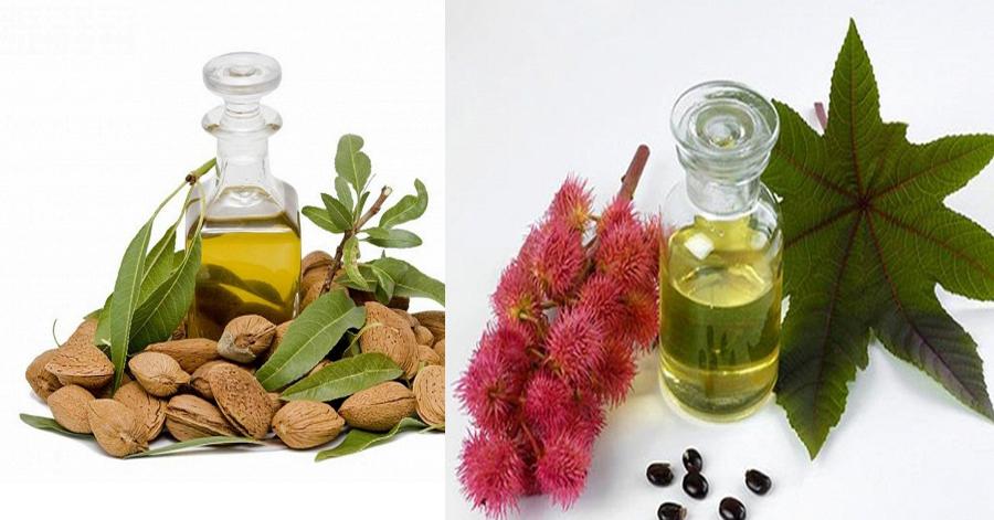 3 loại dầu quen thuộc kích thích lông mày mọc cực nhanh và đẹp