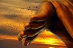 Lời Phật dạy: 6 câu nói hóa giải mọi khó khăn trong cuộc đời, ai cũng nên đọc!