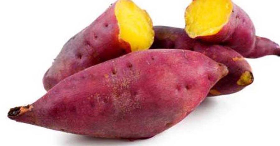 1 củ khoai lang – 3 cách ăn giúp giảm 5kg 1 tuần, không lo tăng cân trở lại