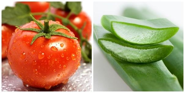 Kết quả hình ảnh cho cà chua, nha đam, dưa chuột