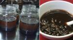Giảm cân bằng đậu đen ngâm dấm - PP giảm cân siêu hiệu quả từ Nhật Bản