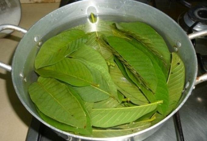 Vừa uống vừa gội loại lá quen thuộc này, tóc rụng cả nắm cũng trị dứt điểm, dài thêm 10cm mà chẳng cần đi nối