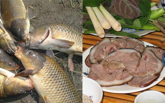 Dù NHỊN ĐÓI cũng đừng dại ĂN CÁ nấu với thứ này kẻo phá hủy nội tạng, có ngày ĐỘT TỬ như chơi