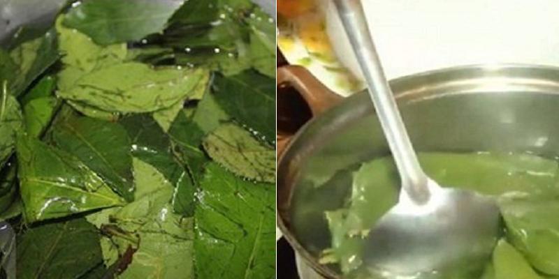 Đun trà xanh kiểu có 1-0-2 này, lấy nước thoa lên mặt để có làn da trắng hồng mềm mịn