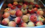 Hỗn hợp loại bỏ 100‰ hóa chất trên rau quả