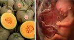 """Top 6 loại trái cây """"mọng nước"""" ngon bổ rẻ, bà bầu nên ăn nhiều để thai nhi không lo bị thiếu ối"""
