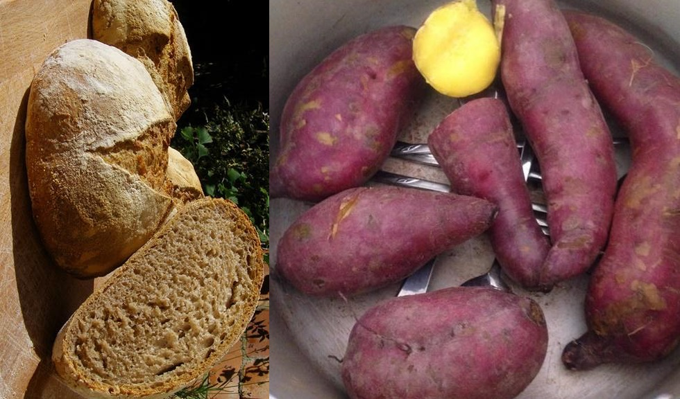 Thay phiên ăn khoai lang và bánh mì vào buổi sáng liên tiếp trong 7 ngày, cô gái giật mình khi giảm đến 10kg
