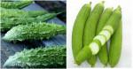 8 loại thực phẩm giúp thải độc tốt nhất: bạn nên biết sớm để có chế độ ăn hợp lý