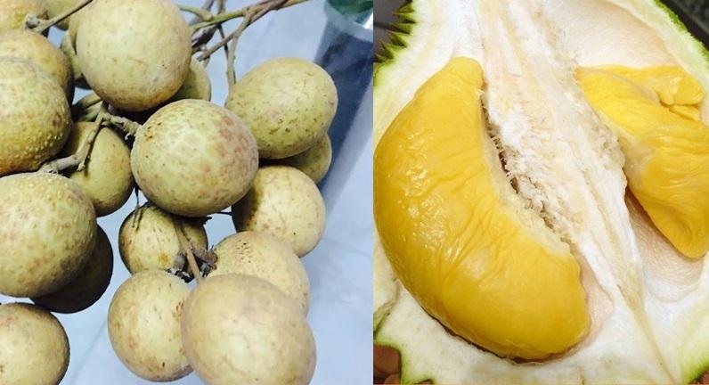 """Cảnh báo 10 loại quả """"tắm"""" hóa chất nhiều nhất, Việt Nam góp mặt tới 10 quả"""
