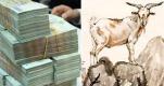 Top 6 con giáp dễ thành đại gia bất động sản trong năm nay, tiền vào như nước