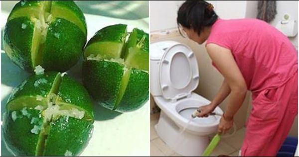 7 thứ tự nhiên chỉ cần để vào nhà vệ sinh là HẾT mùi hôi vĩnh viễn, vi khuẩn tự biến mất